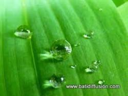 BATI HYDRO - Hydrofuge De Surface / Imperméabilisant