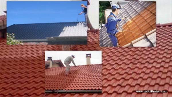 nettoyage d 39 une toiture comment nettoyer son toit. Black Bedroom Furniture Sets. Home Design Ideas